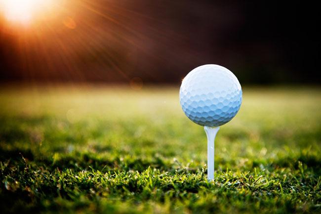 Golf Tee Slider